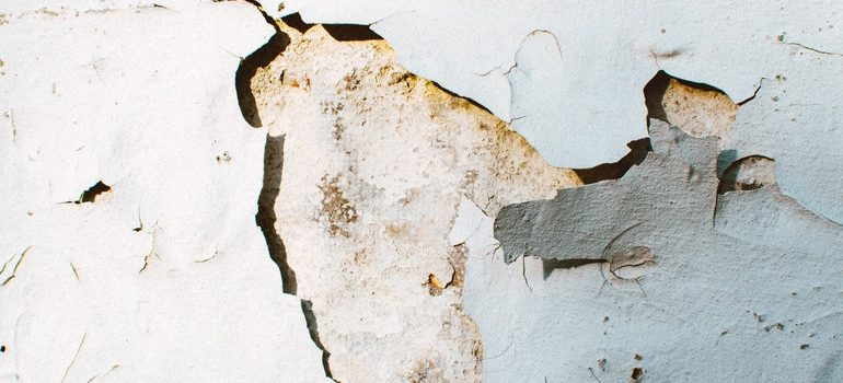 Cracks in a wall.